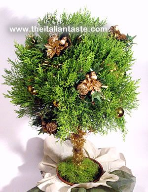 Fresh trimmed pine as Christmas tree, Italy-style. The photo shows a little pine decorated with Christmas ornaments