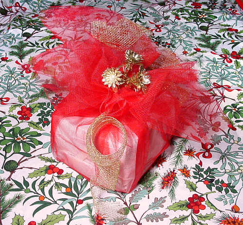 a plittle parcel packed up with red tulle