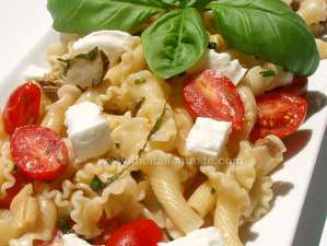 Pasta salad with Buffalo Mozzarella. The photo shows a detail of pasta salad in the platter with pieces of Mozzarella, mushrooms and artichokes in oil and cherry tomatoes